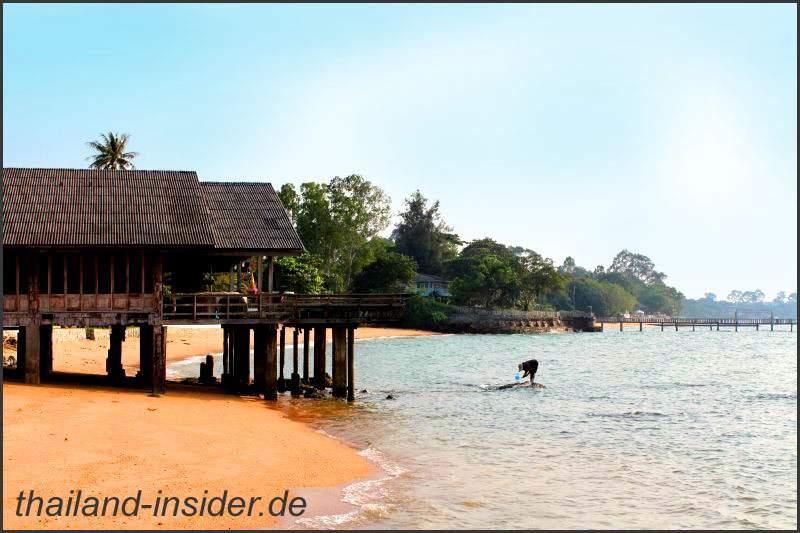 Impressionen von der Strandsuche