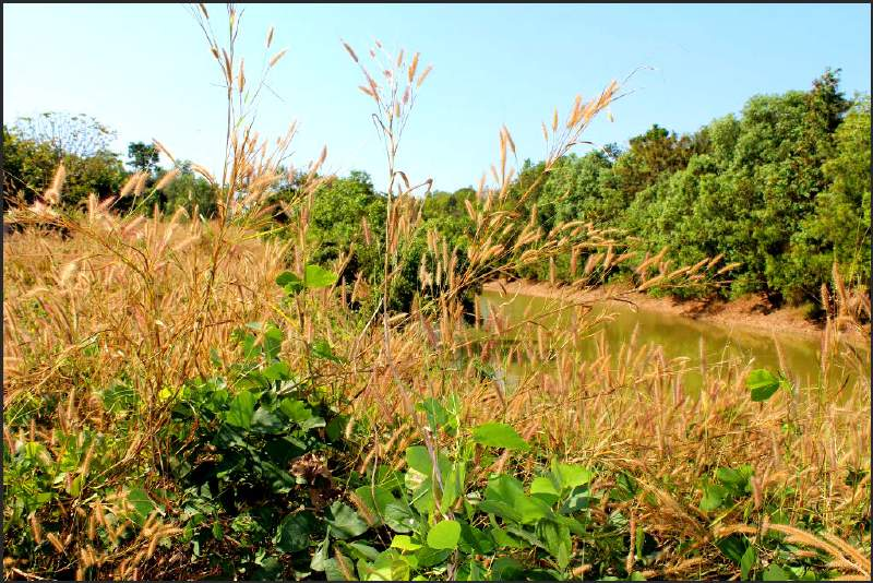 Eindrücke einer Zeitreise in Thailand